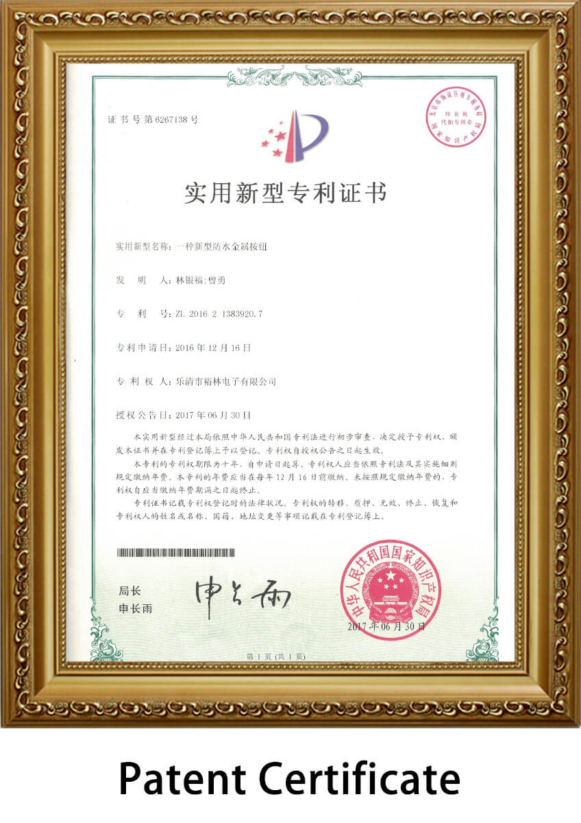 push-switch-patent-certificate9