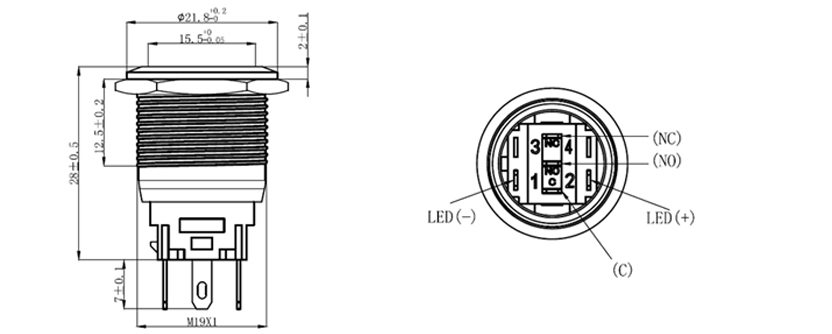 19mm button drawing