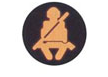 Symbol indicator lights